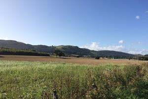 Looking south towards Glenearn Hill