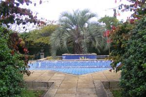 Chumleigh Gardens - Islamic Garden