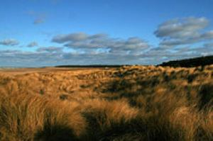 View of Holkham Beach